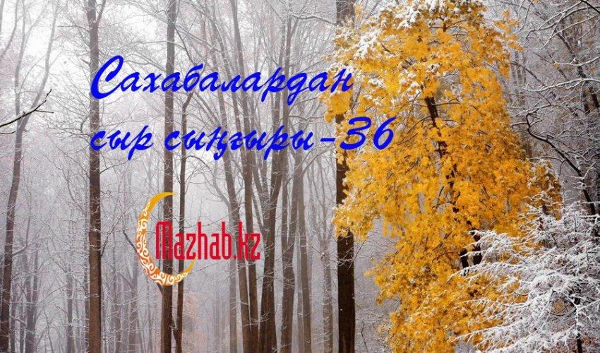 Сахабалардан сыр сыңғыры-36