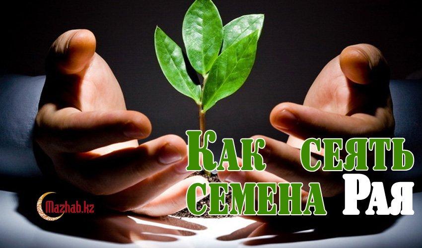Как сеять семена Рая