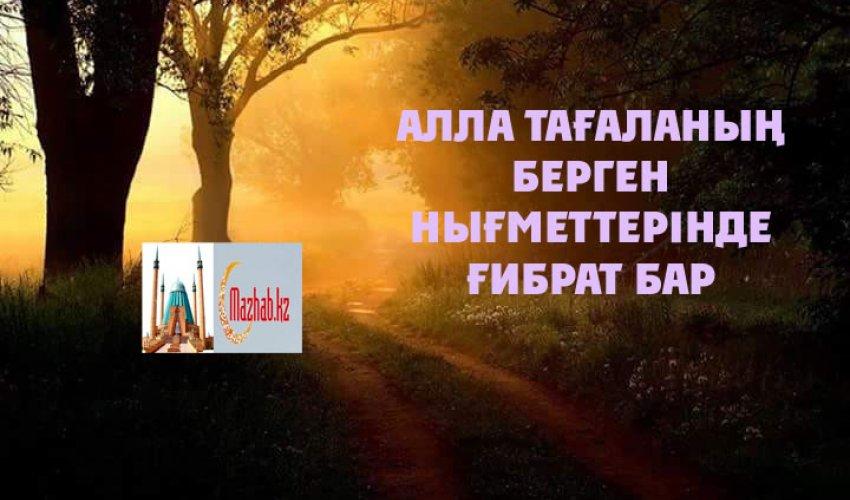 АЛЛА ТАҒАЛАНЫҢ БЕРГЕН НЫҒМЕТТЕРІНДЕ ҒИБРАТ БАР