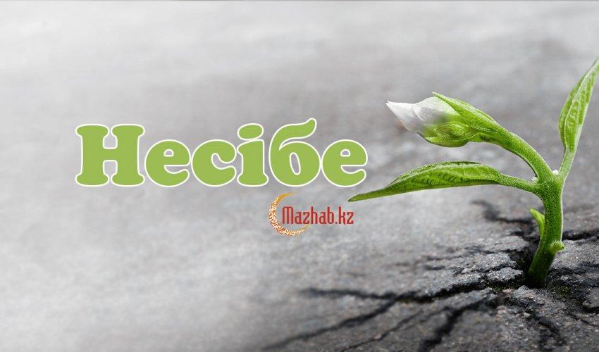 Несібе