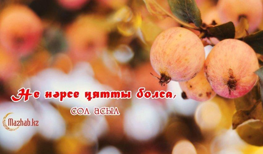 НЕ НӘРСЕ ҰЯТТЫ БОЛСА, СОЛ АСЫЛ