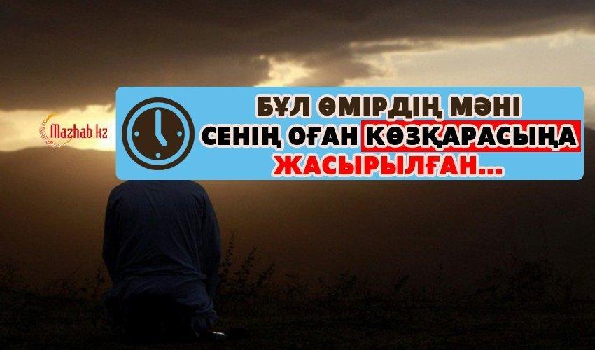 БҰЛ ӨМІРДІҢ МӘНІ СЕНІҢ ОҒАН КӨЗҚАРАСЫҢА ЖАСЫРЫЛҒАН...