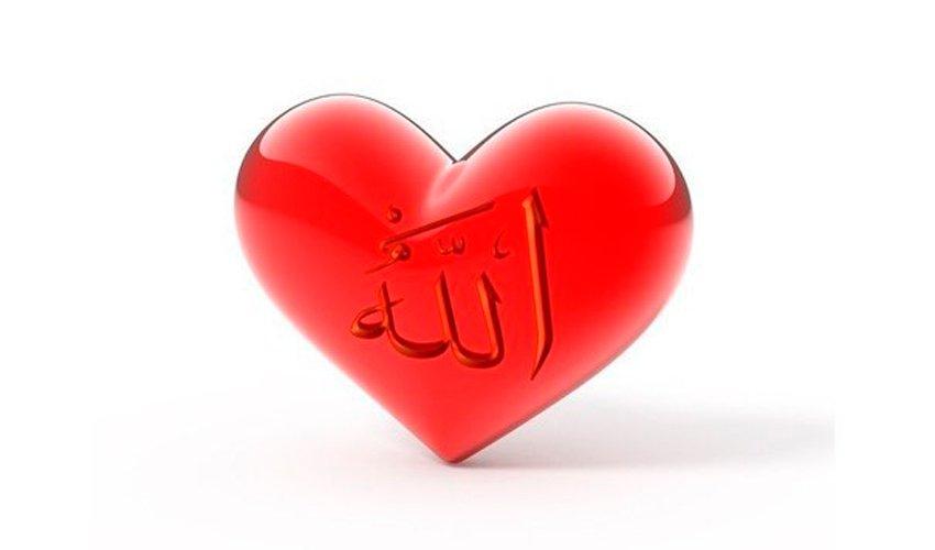 "Глава 17. Врачевание сердец - ""Не грусти"" 'Аида аль-Карни"