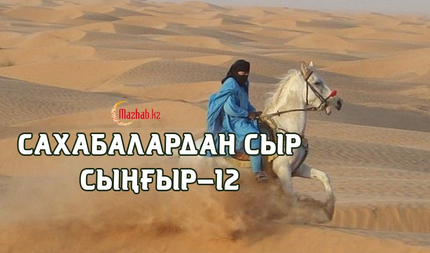 Сахабалардан сыр сыңғыр-12